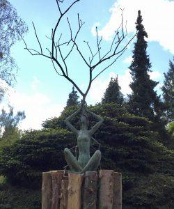 Ode aan de boom